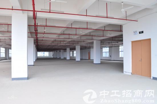 兴宁区 厂房选址专家
