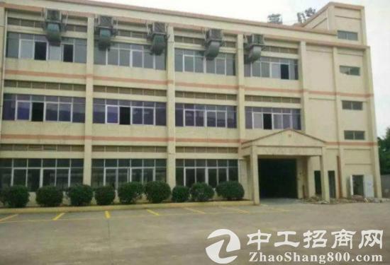 观澜松元新推出1000平方米厂房招租交通方便