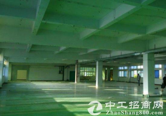 观澜松元新推出1000平方米厂房招租交通方便-图2