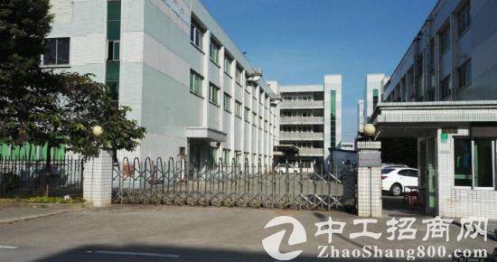 大朗松木山一楼500平米精装修厂房招租