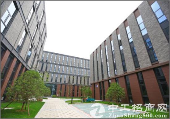 上海1小时经济圈 传感园设备产业园研发楼办公楼出租