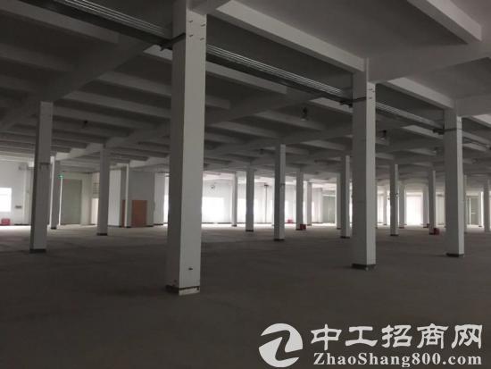 南京江宁区新建厂房20960火热平招商中-图3