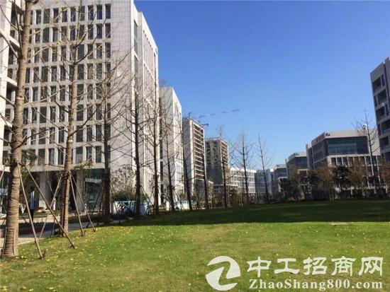 南京溧水智能产业园 写字楼/厂房 出租