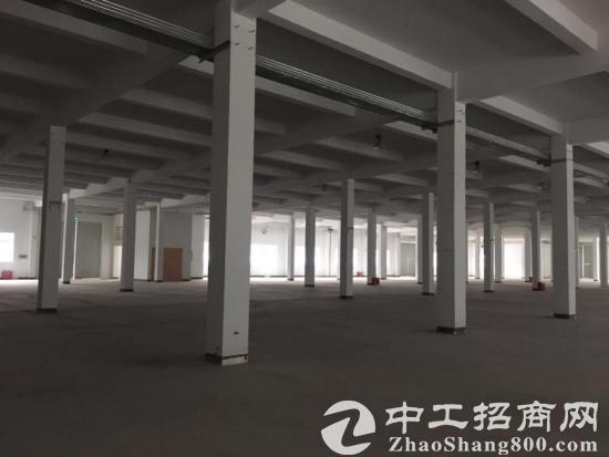 江宁50年产权全新独栋厂房出售 可按揭配套齐全-图3