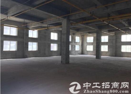 出租江夏庙山武汉汽车公园旁优质新建厂房-图2