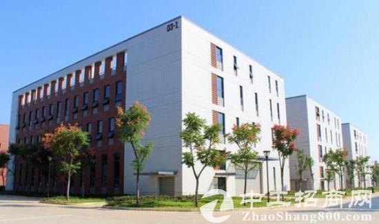 武汉汽车产业集群地 2700平研发办公厂房出售