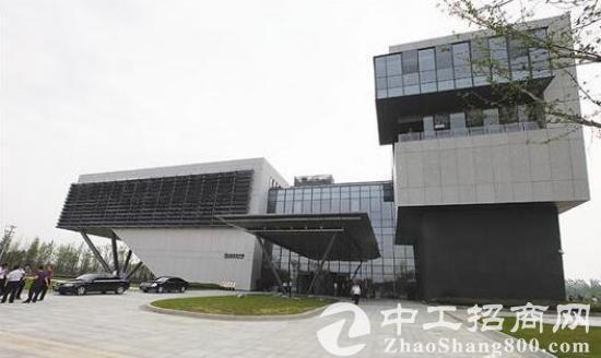 武汉新洲问津高新区,企业产权75亩园区出售