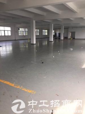 坪山 石井新出楼上整层1400平带办公室整层地坪漆