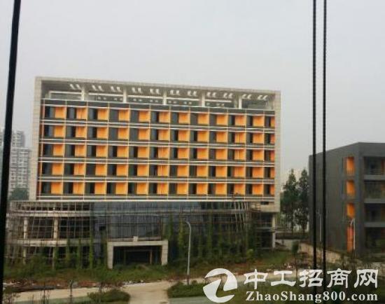 武昌二环线边全新研发生产楼2000平起租售