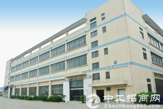 泗泾工业区104地块层高8米独栋厂房1300平起