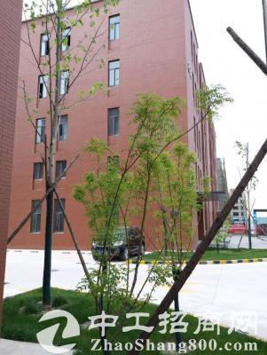 郑州新区独栋四层研发/生产/办公楼首层5米挑高