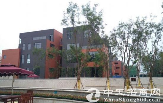 郭店7.2层高独栋框架标准厂房无污染园区厂房出售