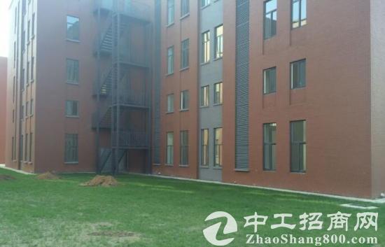 郭店7.2层高独栋框架标准厂房无污染园区厂房出售-图2