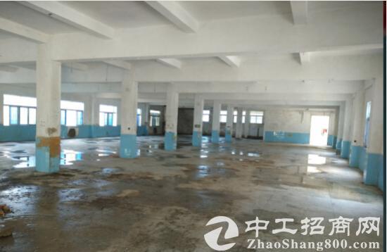 出售南京周边 叉河经济开发区48000平厂房