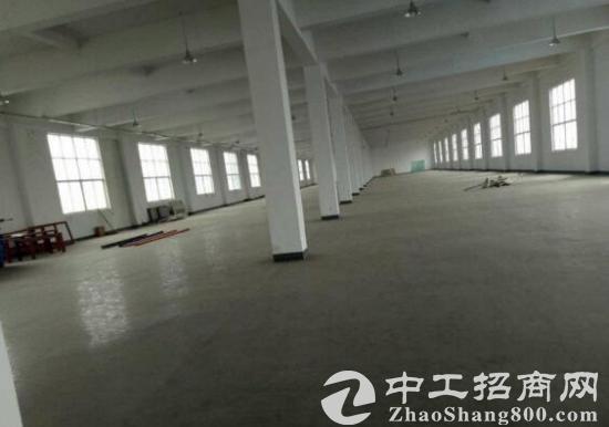 杭埠工业园标准厂房总面积22000平米出租-图2