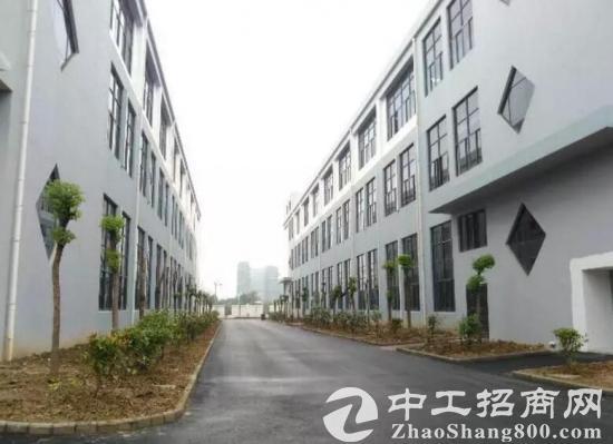 舒城标准化产业园2000平方出租