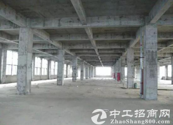 舒城2300至3万方全新优质稀缺框架厂房租赁-图2