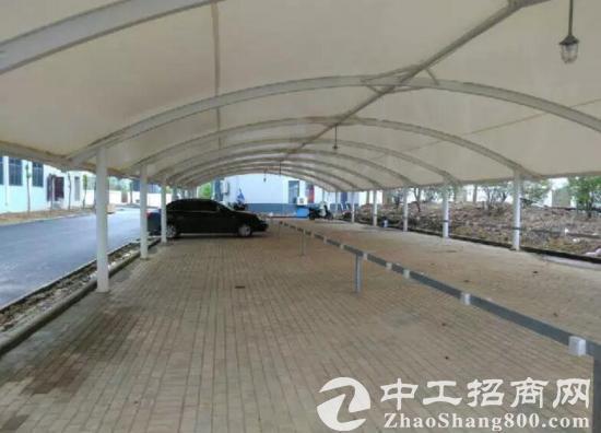 舒城杭埠单层1000平标准厂房出租-图3