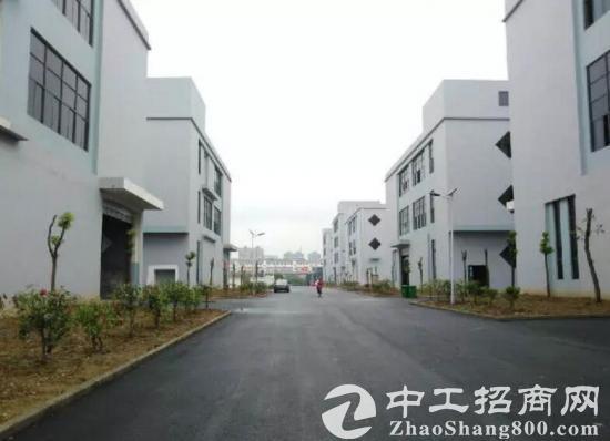 六安舒城全新新能源汽车标准厂房2500平出售