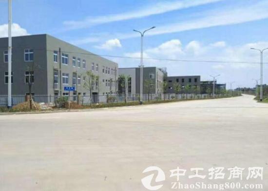 出租博望区新建产业园3600平厂房