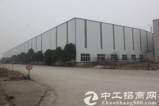和县经济开发区 出租标准钢结构厂房 500平起