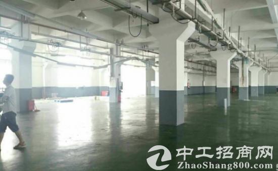 黄江星光村一楼1300平标准厂房出租带水电办公室-图3