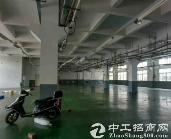 黄江星光村一楼1300平标准厂房出租带水电办公室-图5