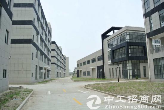 松江车墩104板块700平起交通便利配套齐全的优质厂房出租