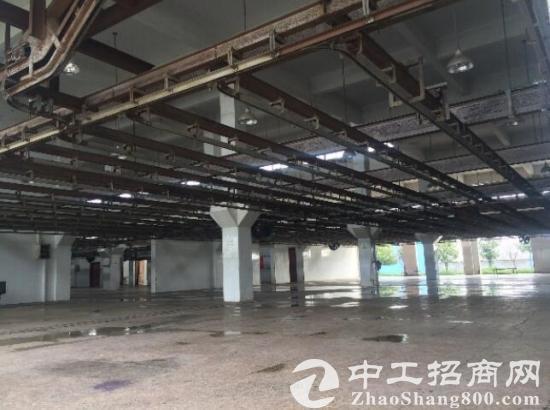 和县台创园巢宁路东侧出租3000平厂房-图2