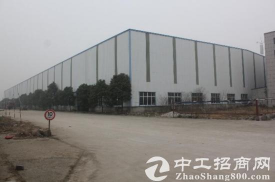 新建钢结构厂房19000平+办公楼5500平方 分割出租