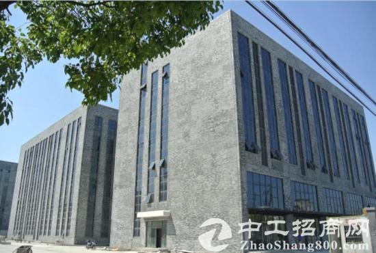 松江新桥690平104地块高品质多层厂房大房东直租
