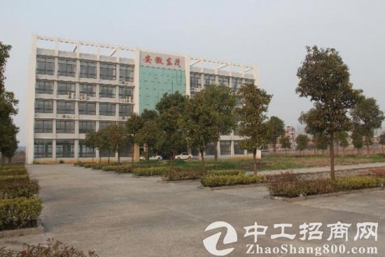 出租 2 栋生产用钢构厂房14600平-图2
