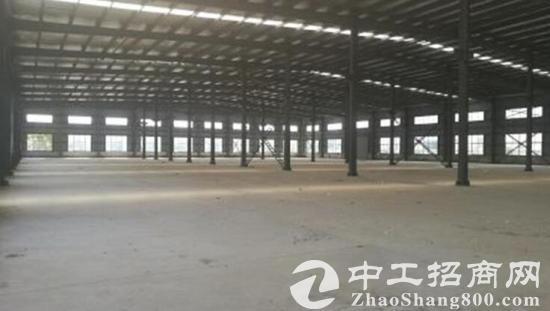 出售独门独院工业园区 总占地面积45亩-图2