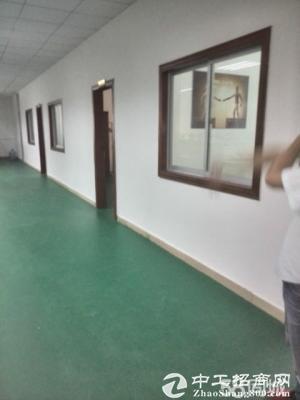 坪山 沙湖一楼厂房2600平方 带装修出租-图3