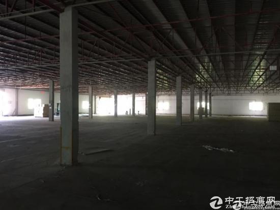 横岗横坪公路路口30000平钢构出租-图3