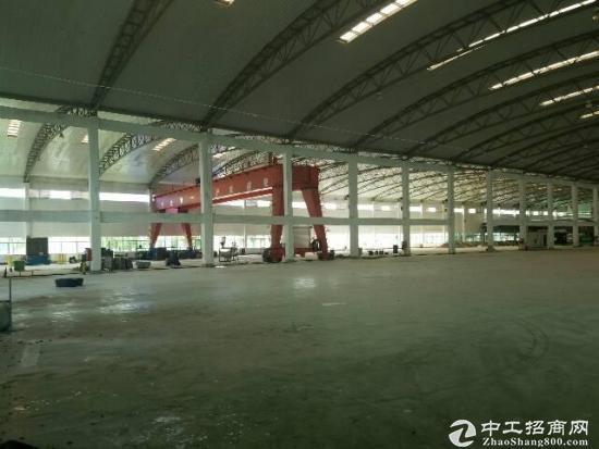 南山区独门独院物流钢构2万平方米,可分租