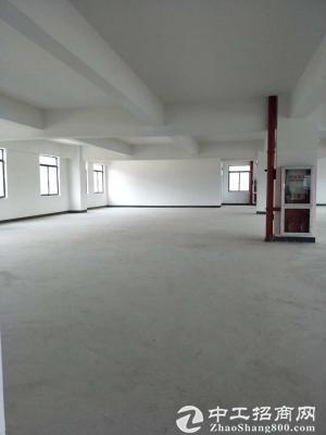 松江新建104地块多层厂房可环评可分割