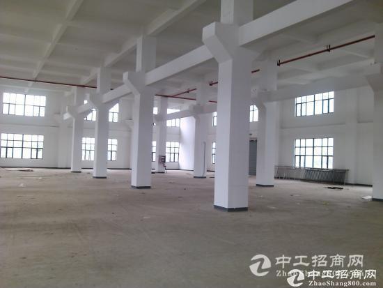 湖熟工业集中区新出标准厂房出租16000平米可分租