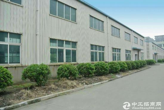 松江单层厂房出租  1300平 层高8米 可环评