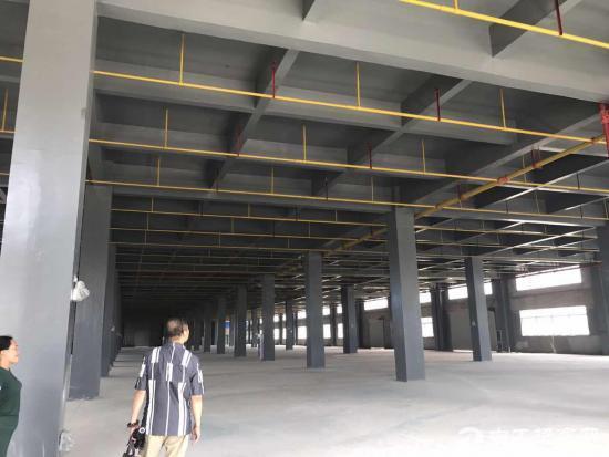 咸宁高新区全新厂房低价出租  可分割