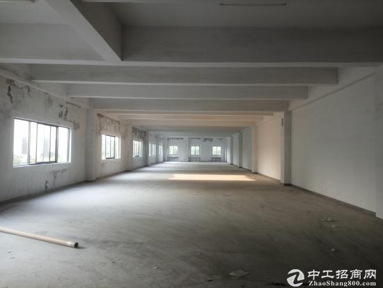 华亭镇3600平米厂房出租-图2