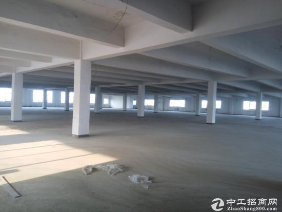 华亭镇3600平米厂房出租-图3