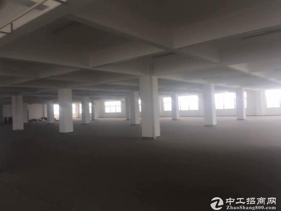 太仓市陆渡镇1800平米厂房出租形象好产证齐全-图3