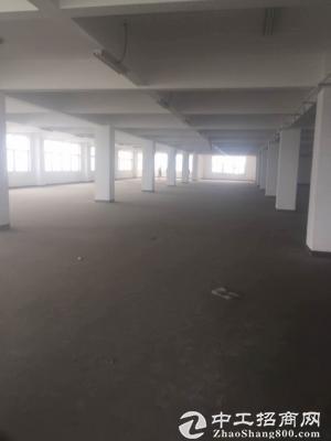 太仓市浮桥镇4200平米厂房出租任何行业都行-图2