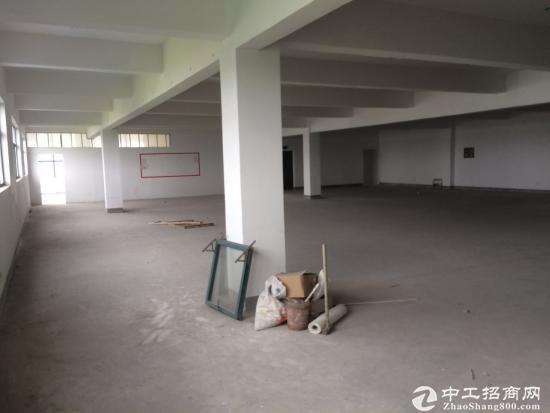 娄塘镇800平米小厂房出租