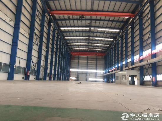 徐泾新出9800平方标准单层厂房