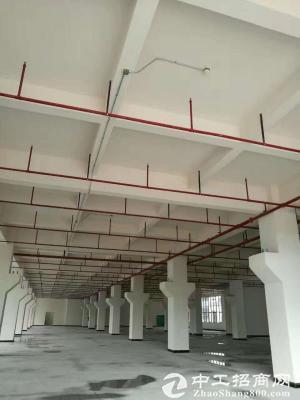 桥头石水口一楼钢构7米高1200平米,带航车厂房招租