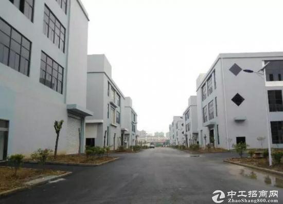 出租合肥周边全新标准厂房1000平米