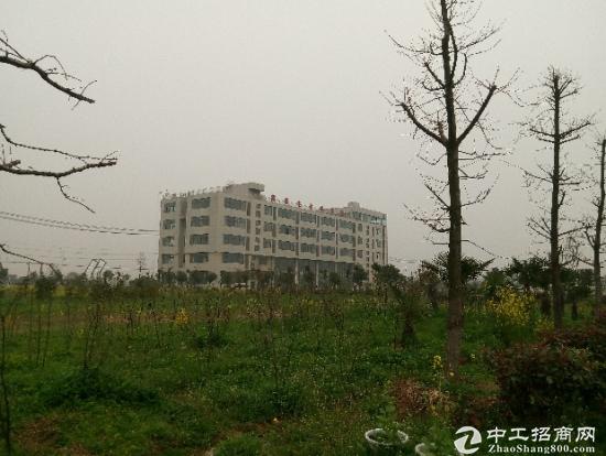合肥附近开发区医药科学院厂房土地出售-图2