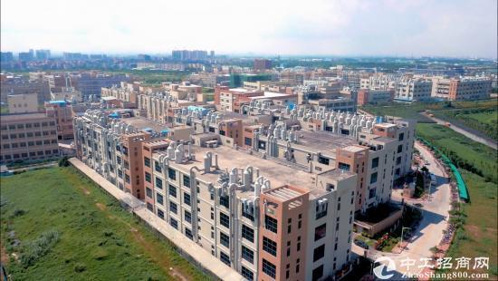 豪丰工业园全新亿万先生-图5